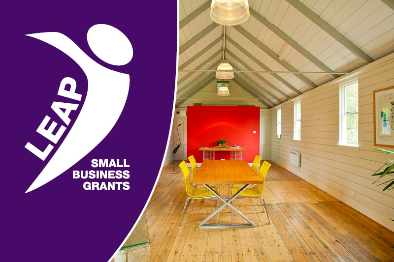 LEAP Small Business Grants